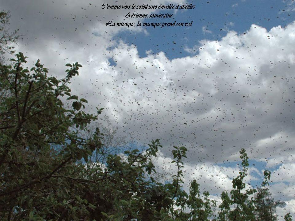 Comme vers le soleil une envolée d abeilles Aérienne, souveraine La musique, la musique prend son vol