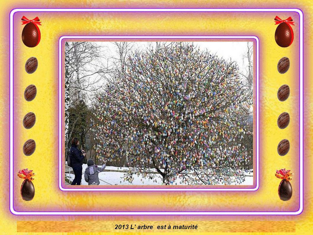 1994. L arbre a pris de l ampleur