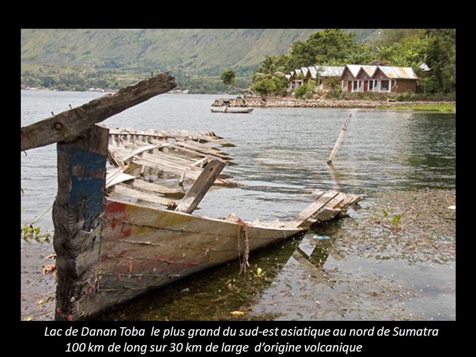 Célébes et iles Togean dans le golfe de Tomini.