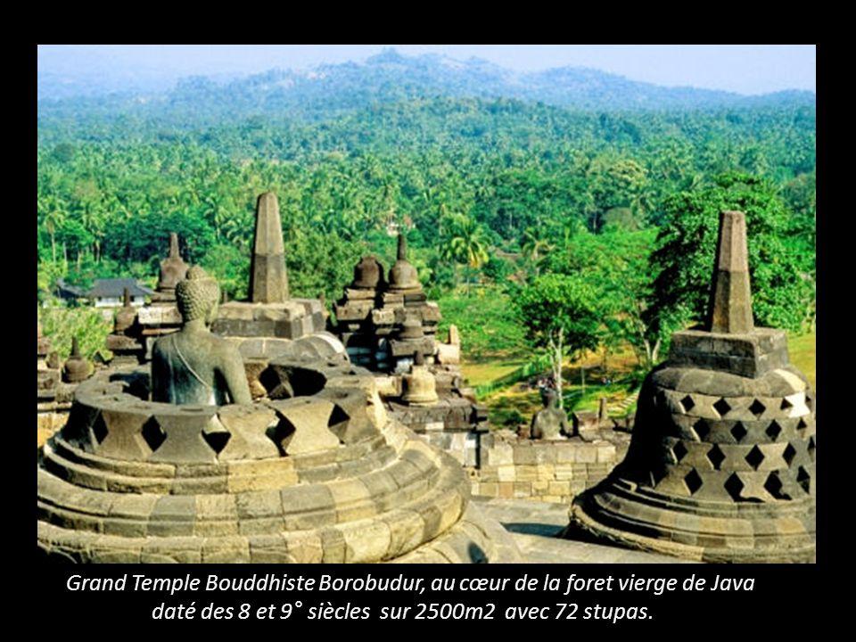 Grand Temple Bouddhiste Borobudur, au cœur de la foret vierge de Java daté des 8 et 9° siècles sur 2500m2 avec 72 stupas.