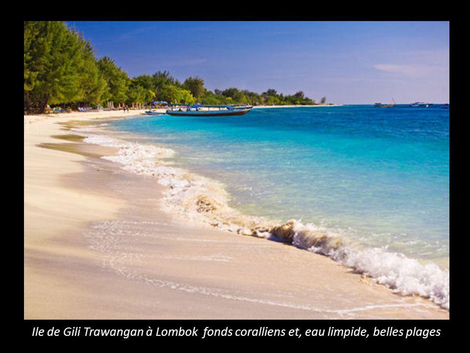 Ile de Gili Trawangan à Lombok fonds coralliens et, eau limpide, belles plages
