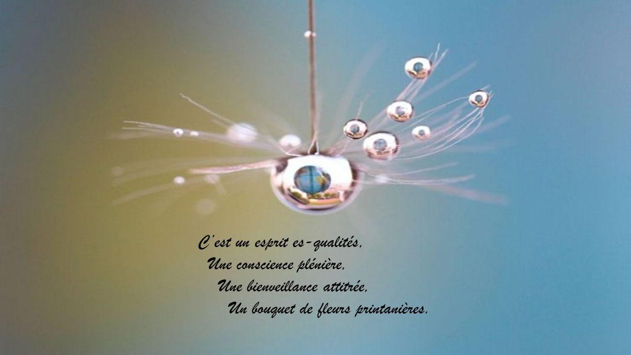 Cest un esprit es-qualités, Une conscience plénière, Une bienveillance attitrée, Un bouquet de fleurs printanières.