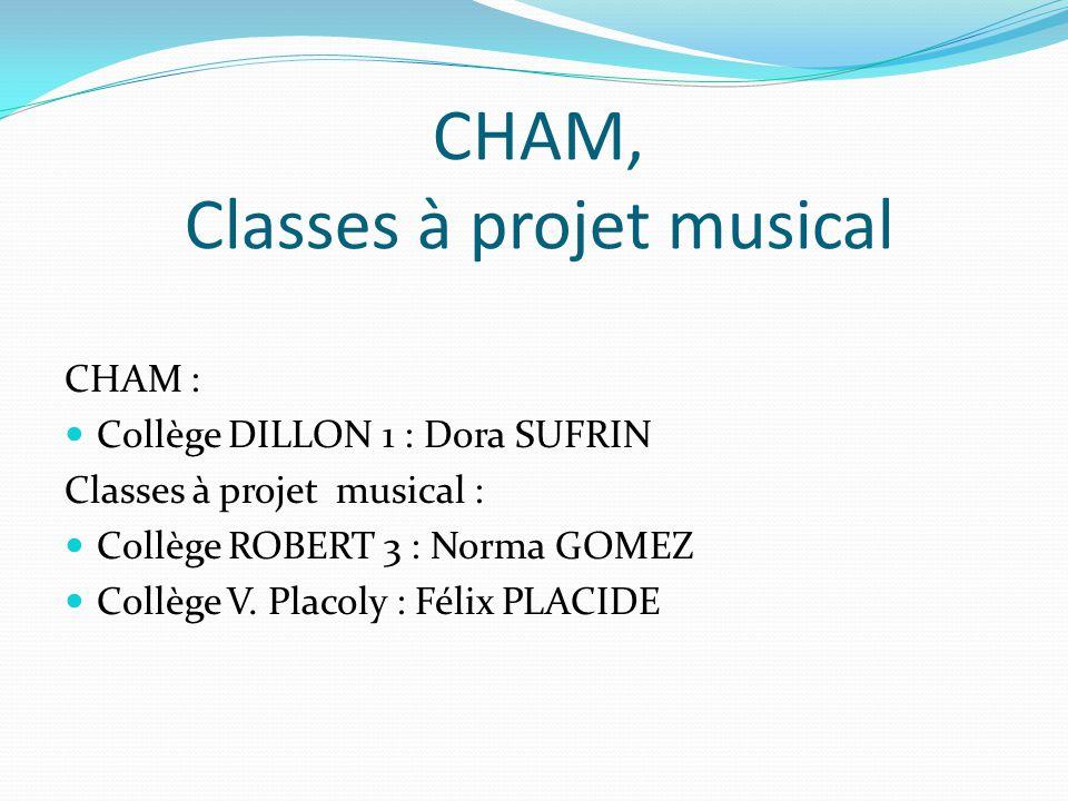 CHAM, Classes à projet musical CHAM : Collège DILLON 1 : Dora SUFRIN Classes à projet musical : Collège ROBERT 3 : Norma GOMEZ Collège V. Placoly : Fé