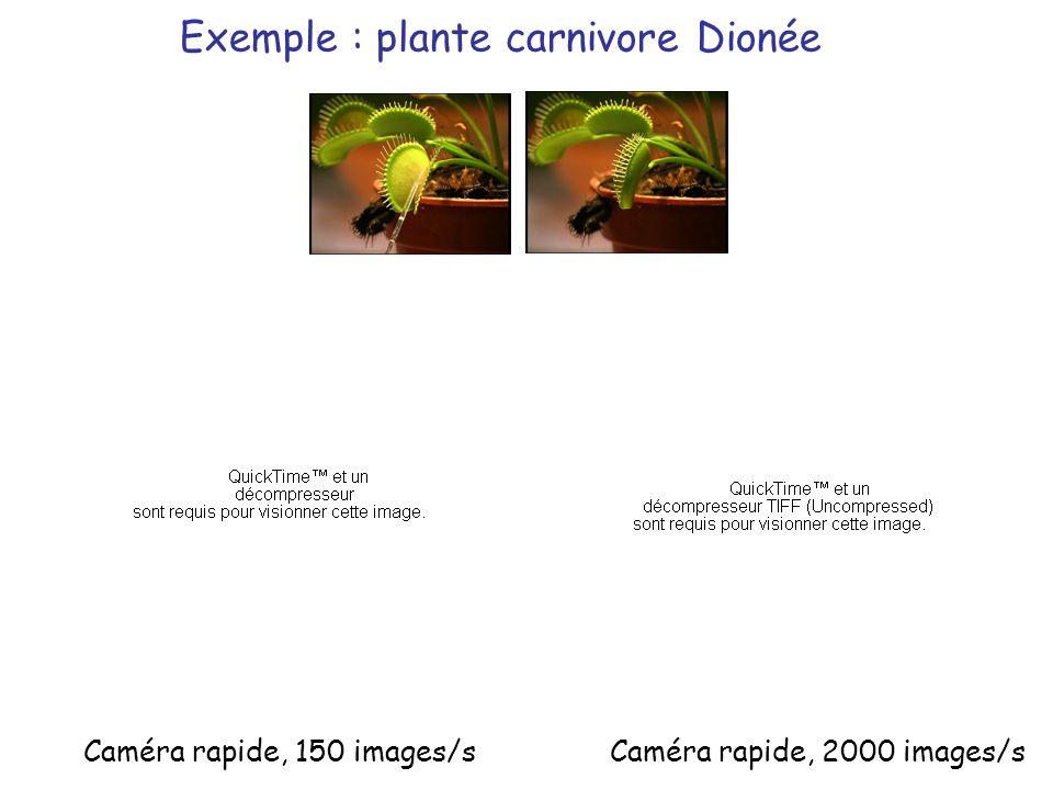 Caméra rapide, 150 images/s Exemple : plante carnivore Dionée Caméra rapide, 2000 images/s