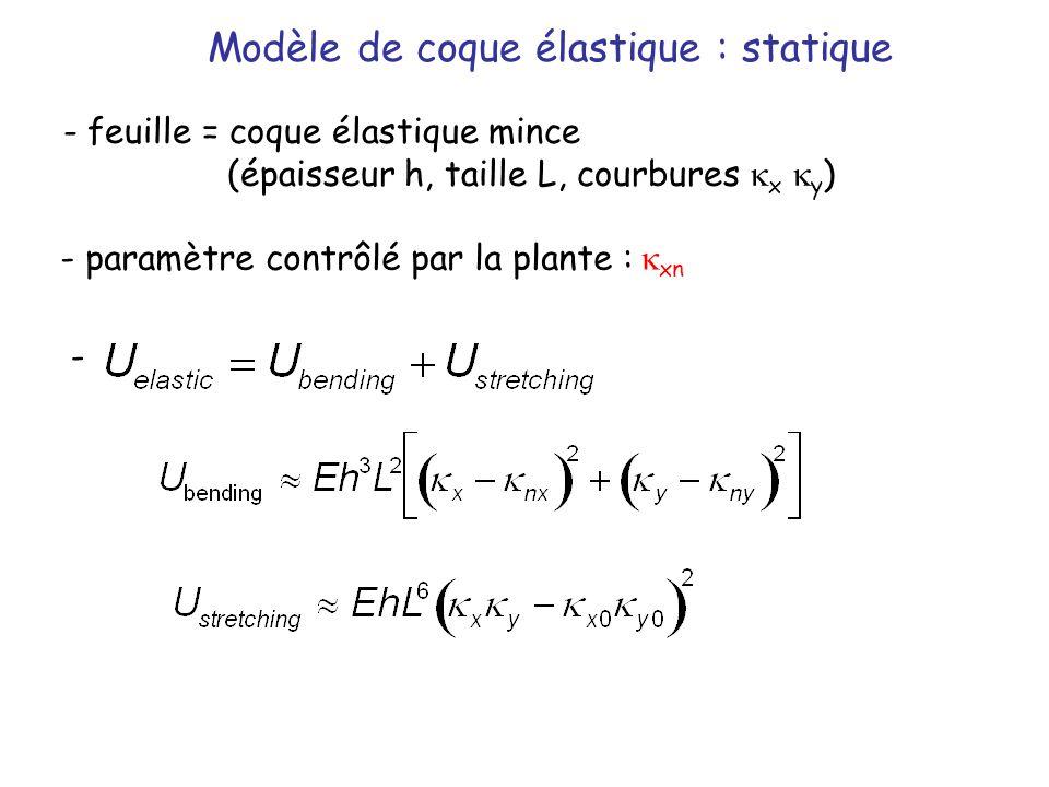 Modèle de coque élastique : statique - feuille = coque élastique mince (épaisseur h, taille L, courbures x y ) - paramètre contrôlé par la plante : xn
