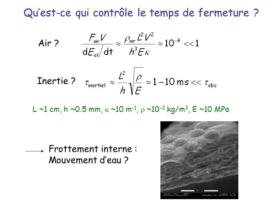 Inertie .Air . Frottement interne : Mouvement deau .