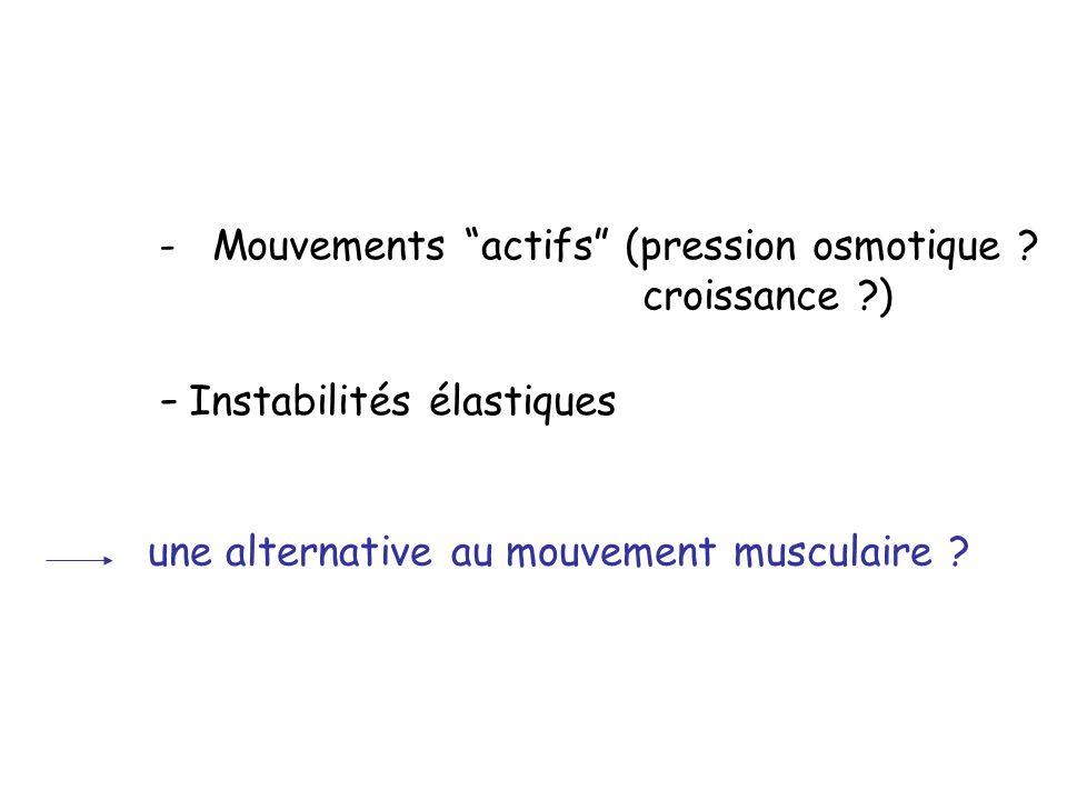 une alternative au mouvement musculaire ? -Mouvements actifs (pression osmotique ? croissance ?) - Instabilités élastiques