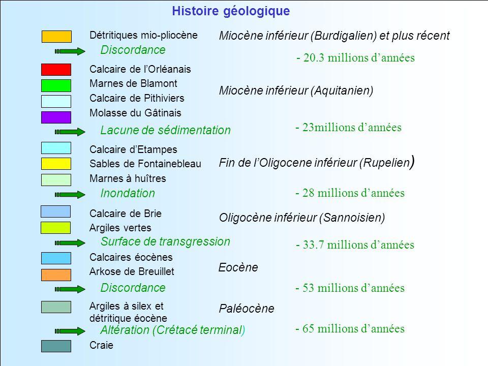 Paléocène Miocène inférieur (Aquitanien) Eocène Miocène inférieur (Burdigalien) et plus récent Fin de lOligocene inférieur (Rupelien ) Oligocène inférieur (Sannoisien) Calcaires éocènes Arkose de Breuillet Argiles à silex et détritique éocène Calcaire de lOrléanais Marnes de Blamont Calcaire de Pithiviers Molasse du Gâtinais Détritiques mio-pliocène Calcaire dEtampes Sables de Fontainebleau Marnes à huîtres Calcaire de Brie Argiles vertes Craie Histoire géologique Surface de transgression Lacune de sédimentation Discordance Inondation Discordance Altération (Crétacé terminal) - 20.3 millions dannées - 23millions dannées - 28 millions dannées - 33.7 millions dannées - 53 millions dannées - 65 millions dannées