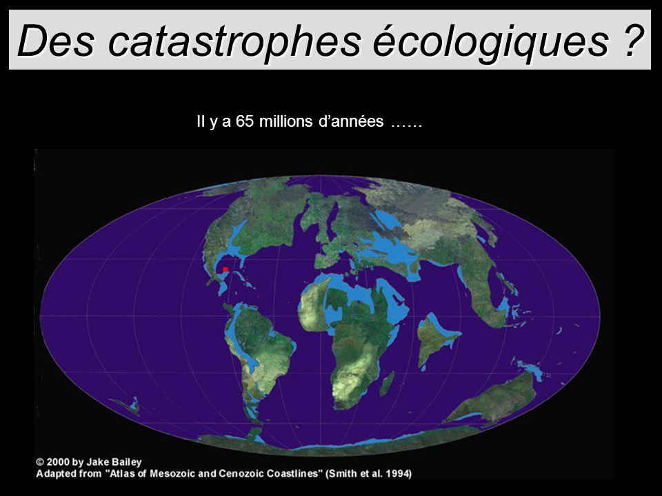 Des catastrophes écologiques ? Il y a 65 millions dannées ……