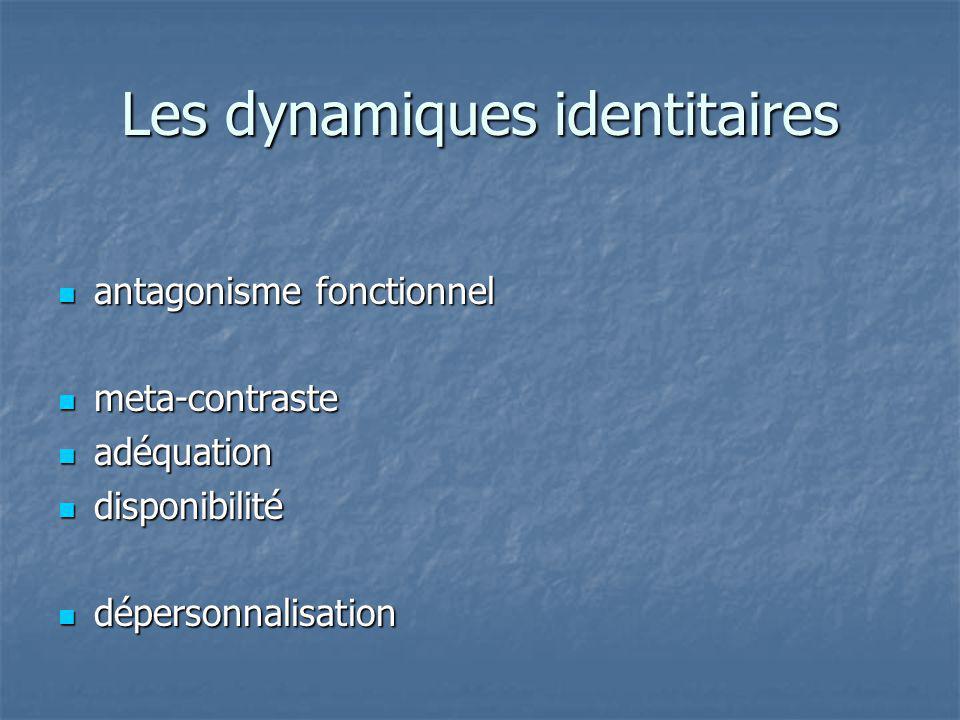 Les dynamiques identitaires antagonisme fonctionnel antagonisme fonctionnel meta-contraste meta-contraste adéquation adéquation disponibilité disponib