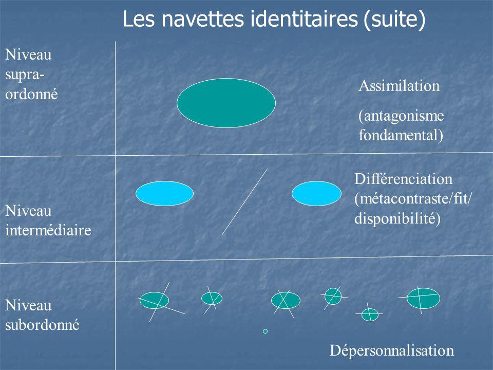 Niveau supra- ordonné Niveau intermédiaire Niveau subordonné Assimilation (antagonisme fondamental) Différenciation (métacontraste/fit/ disponibilité)