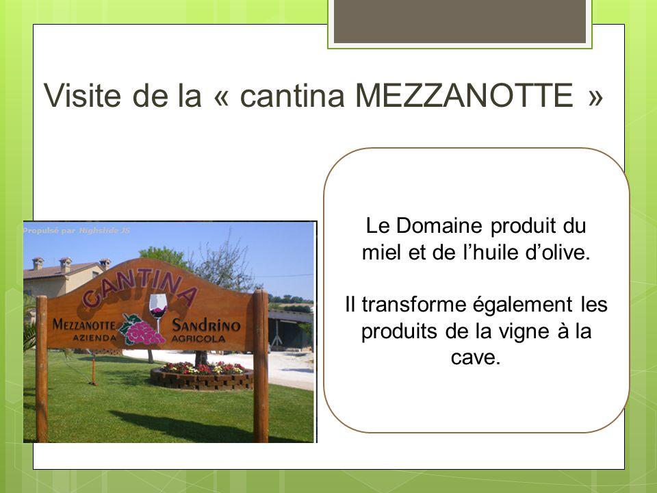 Visite de la « cantina MEZZANOTTE » Le Domaine produit du miel et de lhuile dolive. Il transforme également les produits de la vigne à la cave.