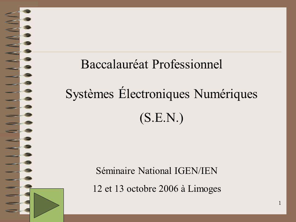 2 État des lieux du Bac Pro SEN dans les académies 28 académies ….