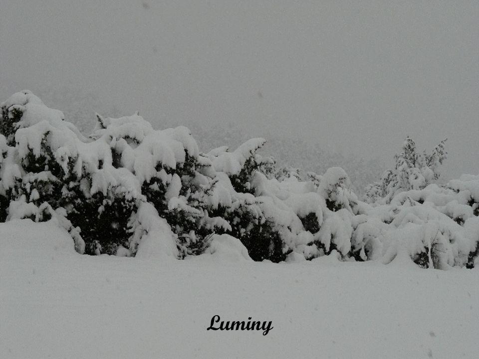 Colline de Verduron, on pourrait se croire à la montagne