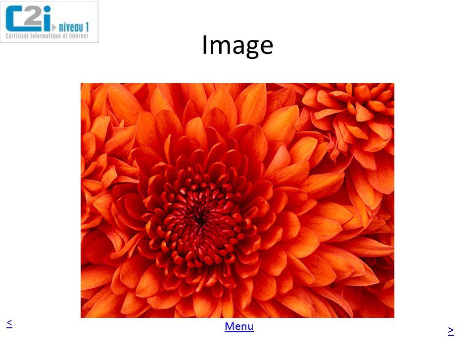 < > Menu Image