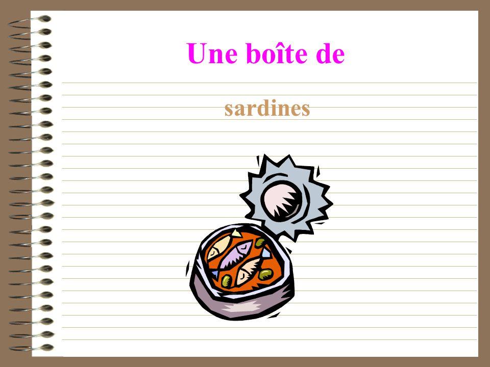 Une boîte de sardines