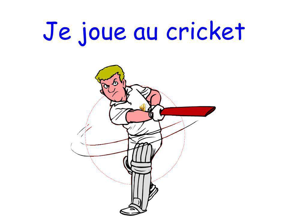 Je joue au cricket