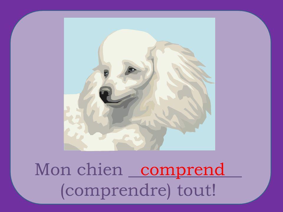 Mon chien _____________ (comprendre) tout! comprend