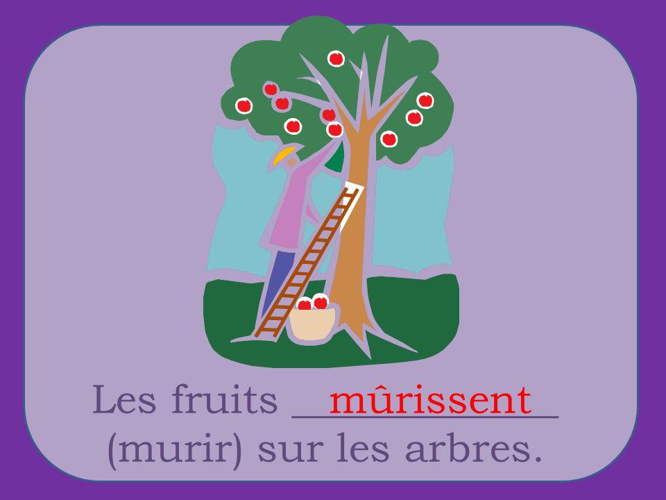 Les fruits _____________ (murir) sur les arbres. mûrissent