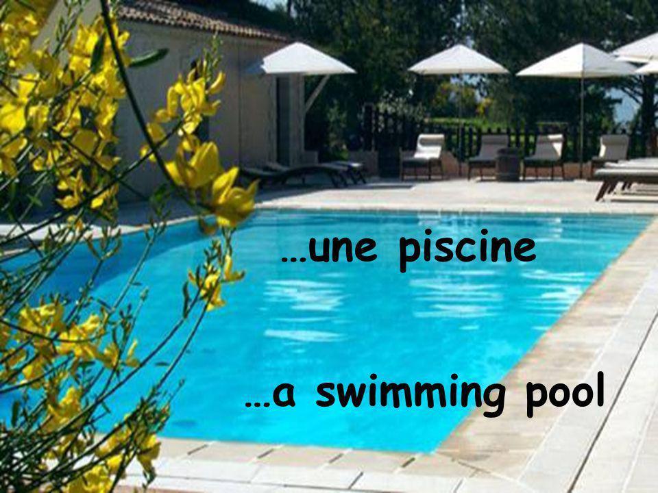 …une piscine …a swimming pool