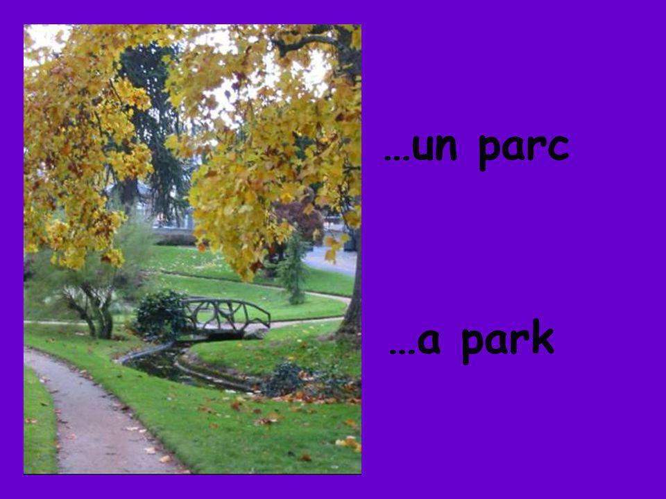 …un parc …a park