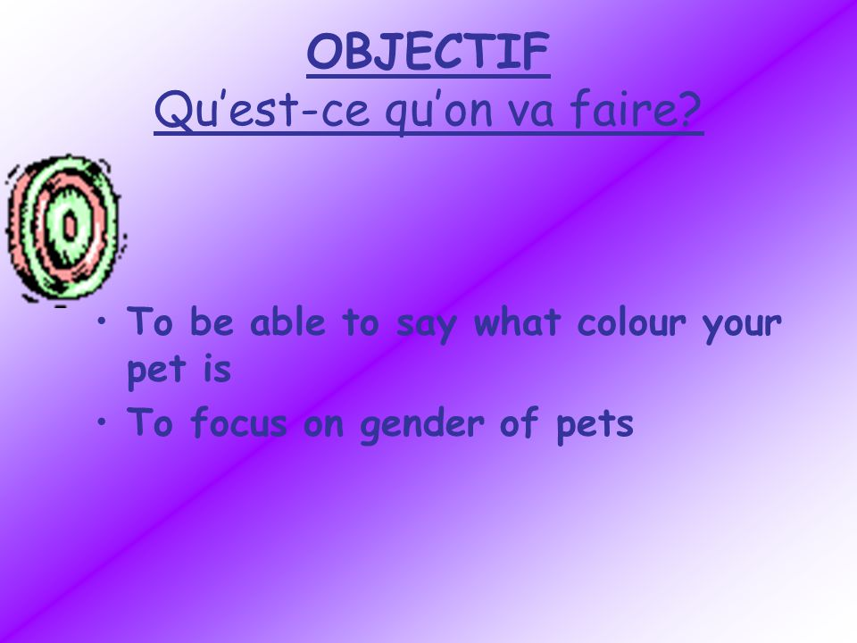 OBJECTIF Quest-ce quon va faire? To be able to say what colour your pet is To focus on gender of pets