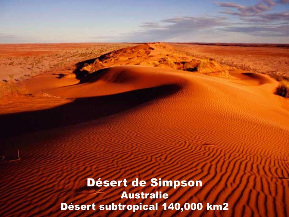 Désert de Gibson Australie Désert subtropical 155,000 km2