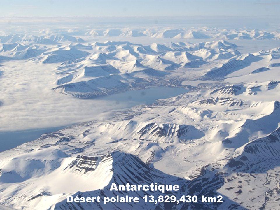 Désert des Mojave États-Unis Désert subtropical 65,000 km2