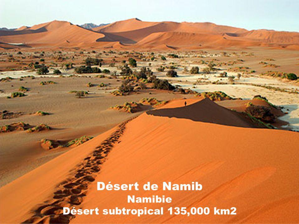 Désert dAtacama Chili Désert subtropical 140,000 km2