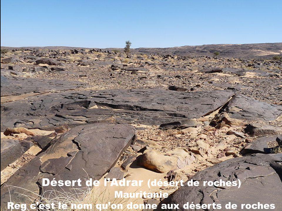 Désert de sel dUyumi Bolivie Un désert de sel ou salar est un lac plus ou moins temporaire et aux rives changeantes dont les sédiments sont essentiell