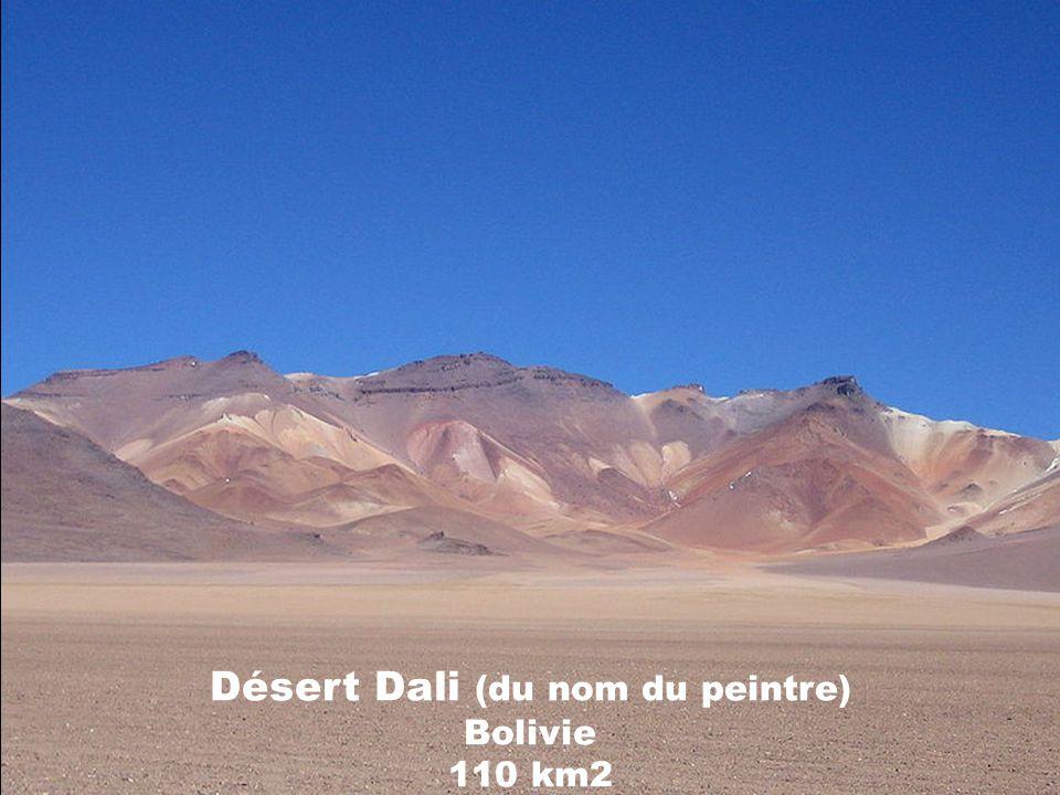 Painted desert États-Unis, Arizona 384 km2