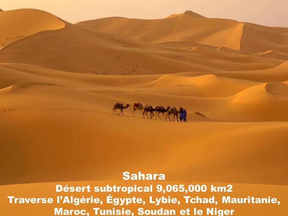 Sahara Désert subtropical 9,065,000 km2 Traverse lAlgérie, Égypte, Lybie, Tchad, Mauritanie, Maroc, Tunisie, Soudan et le Niger