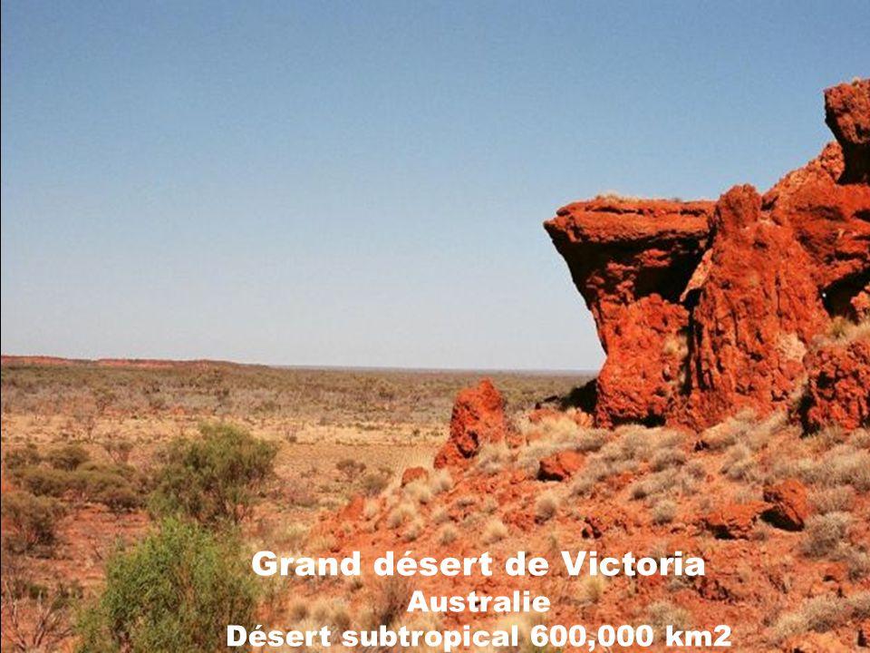 Grand désert de Victoria Australie Désert subtropical 600,000 km2