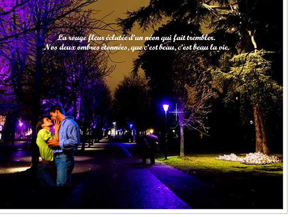 Le jazz ouvert dans la nuit, sa trompette qui nous suit. Dans une rue de Paris, que cest beau, cest beau la vie.