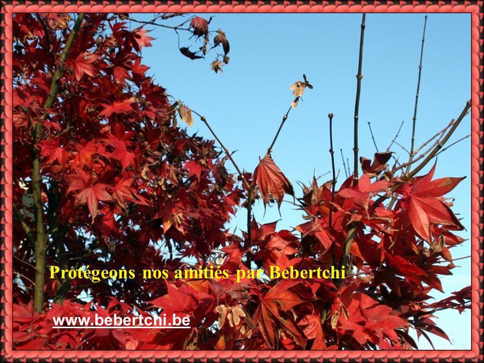 Protégeons nos amitiés par Bebertchi ! www.bebertchi.be