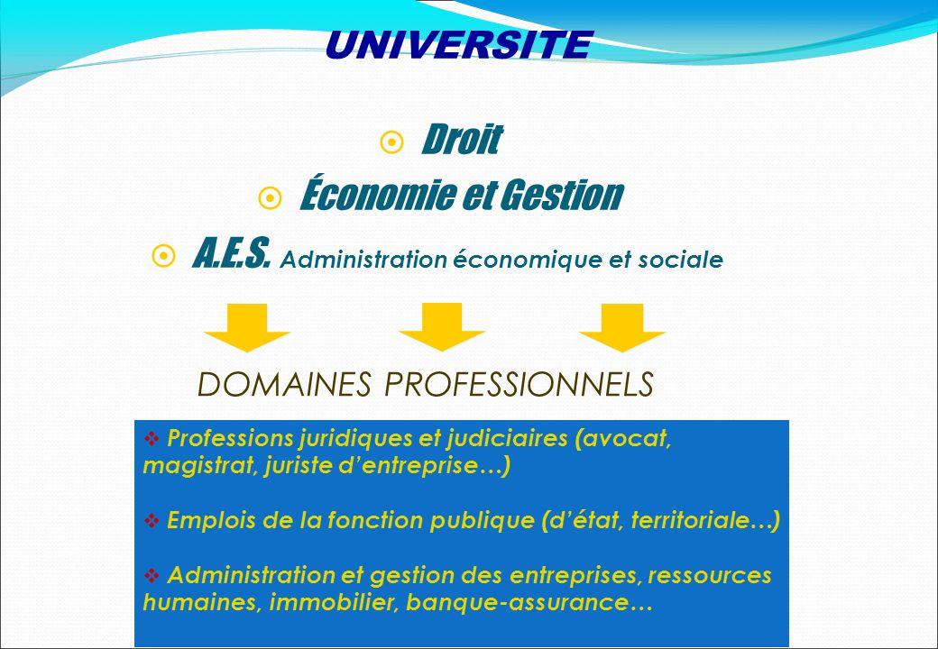 DOMAINES PROFESSIONNELS Droit Économie et Gestion A.E.S. Administration économique et sociale Professions juridiques et judiciaires (avocat, magistrat
