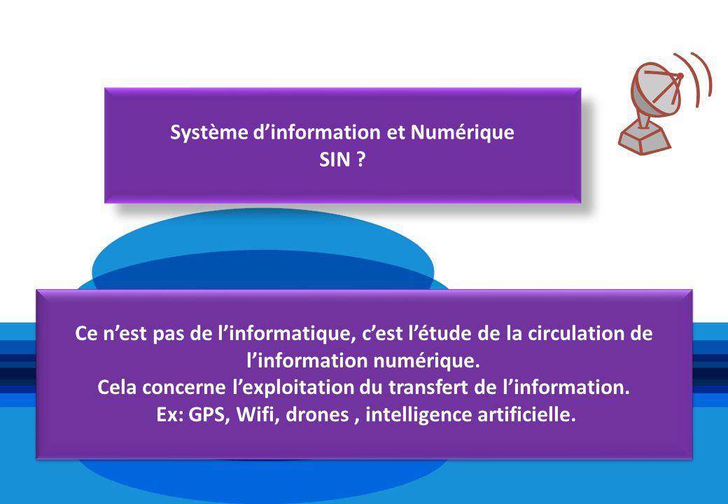 Système dinformation et Numérique SIN ? Système dinformation et Numérique SIN ? Ce nest pas de linformatique, cest létude de la circulation de linform