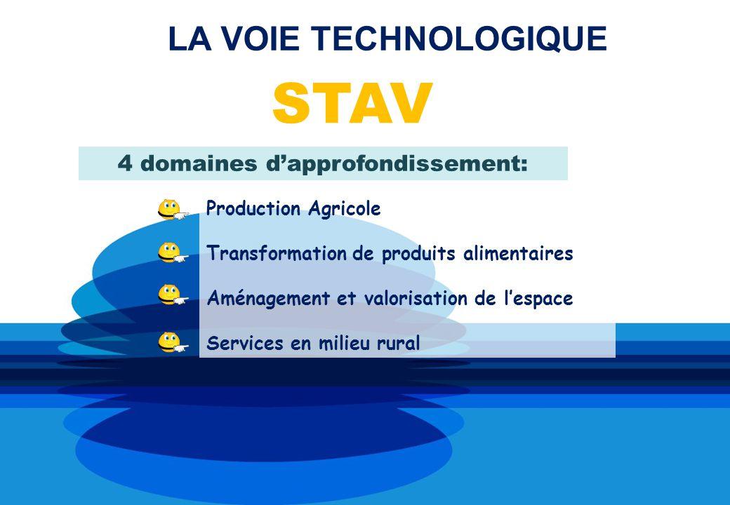 LA VOIE TECHNOLOGIQUE STAV 4 domaines dapprofondissement: Production Agricole Transformation de produits alimentaires Aménagement et valorisation de lespace Services en milieu rural