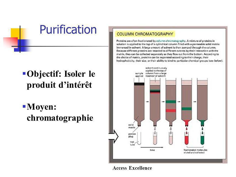 Purification Objectif: Isoler le produit dintérêt Moyen: chromatographie Access Excellence