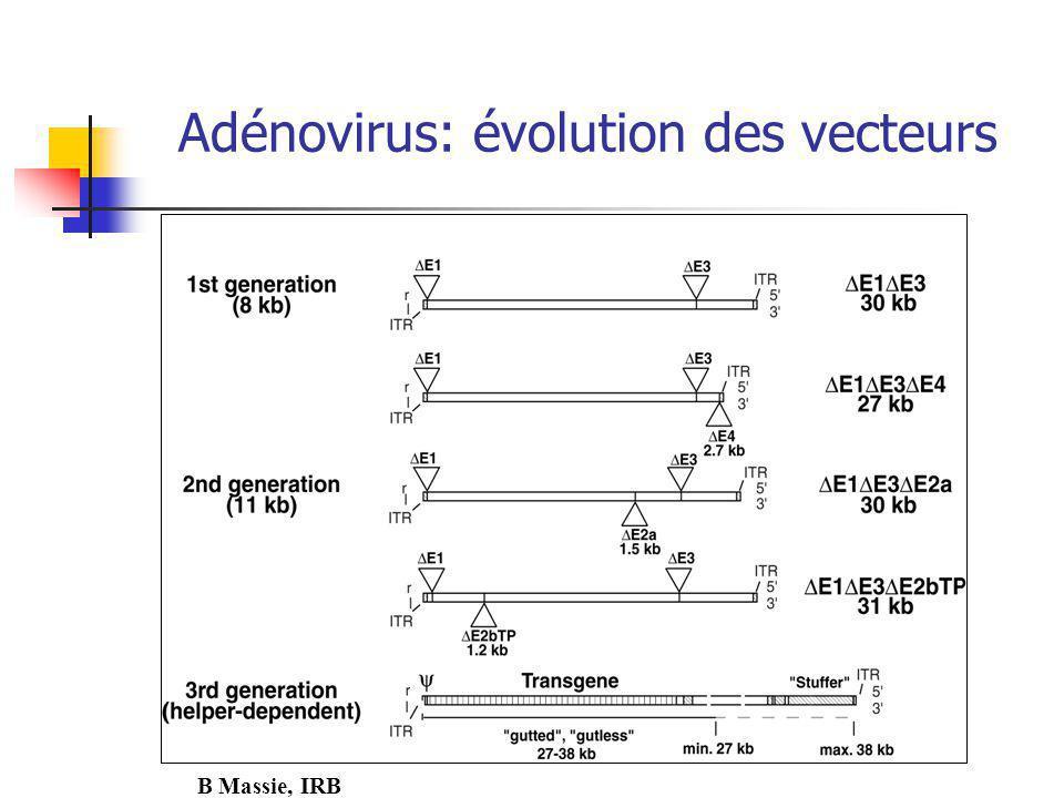 Adénovirus: évolution des vecteurs B Massie, IRB