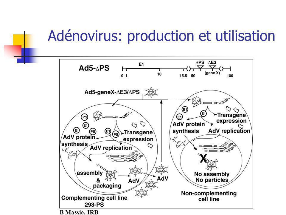 Adénovirus: production et utilisation B Massie, IRB