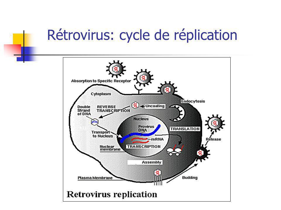 Rétrovirus: cycle de réplication