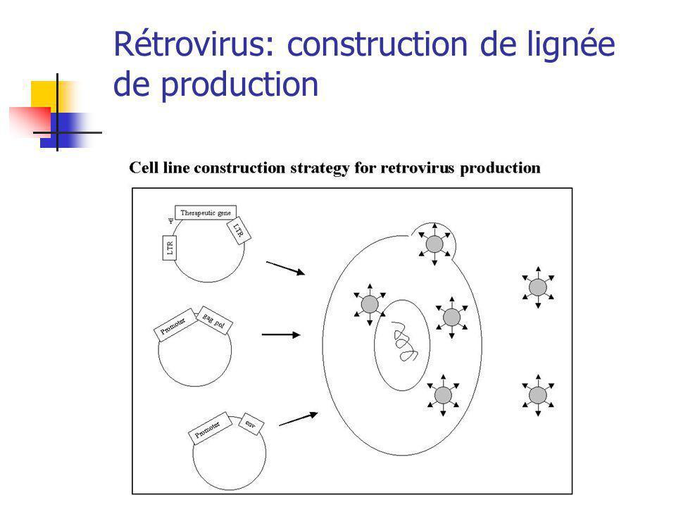 Rétrovirus: construction de lignée de production