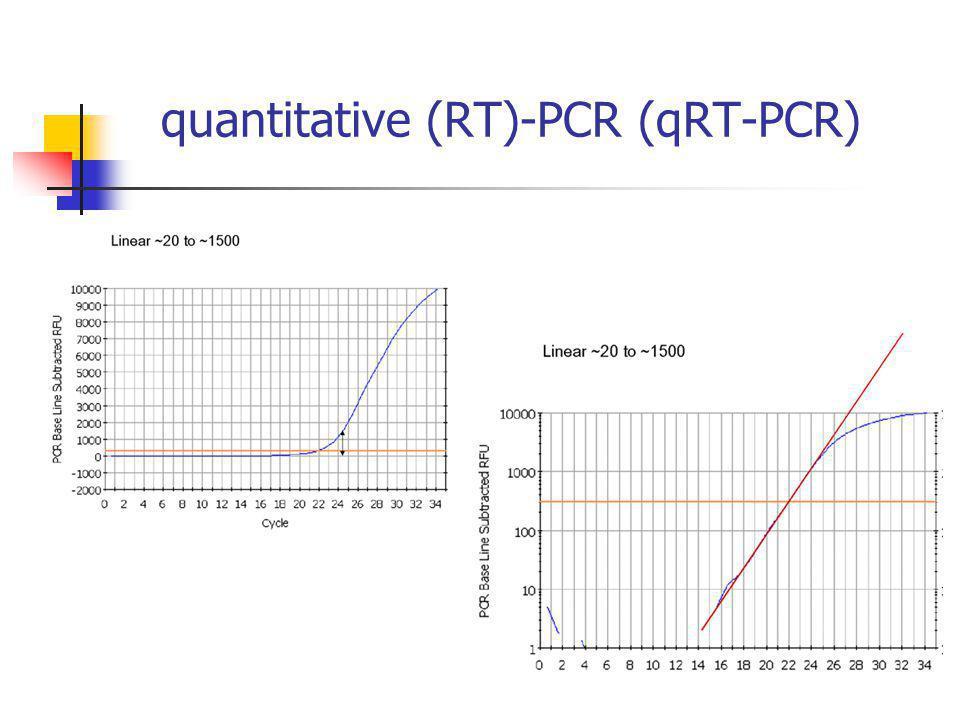 quantitative (RT)-PCR (qRT-PCR)