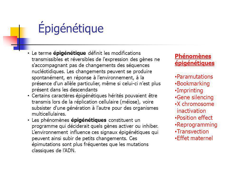 Épigénétique Le terme épigénétique définit les modifications transmissibles et réversibles de l expression des gènes ne s accompagnant pas de changements des séquences nucléotidiques.