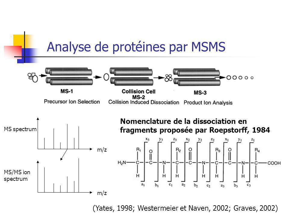 Analyse de protéines par MSMS (Yates, 1998; Westermeier et Naven, 2002; Graves, 2002) MS spectrum MS/MS ion spectrum m/z Nomenclature de la dissociation en fragments proposée par Roepstorff, 1984