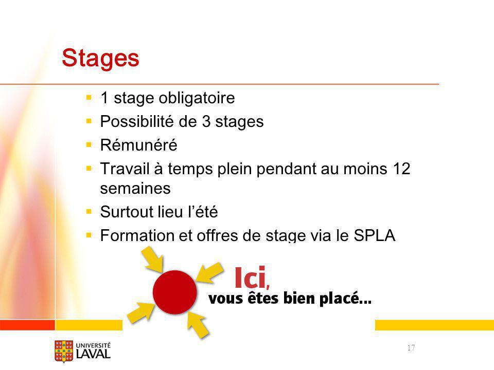 Stages 1 stage obligatoire Possibilité de 3 stages Rémunéré Travail à temps plein pendant au moins 12 semaines Surtout lieu lété Formation et offres d