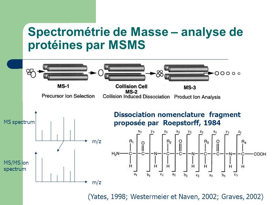Spectrométrie de Masse – analyse de protéines par MSMS (Yates, 1998; Westermeier et Naven, 2002; Graves, 2002) MS spectrum MS/MS ion spectrum m/z Diss