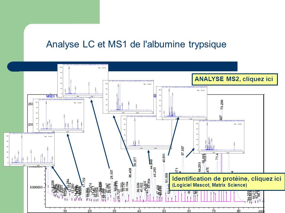 Analyse LC et MS1 de l'albumine trypsique ANALYSE MS2, cliquez ici Identification de protéine, cliquez ici (Logiciel Mascot, Matrix Science)