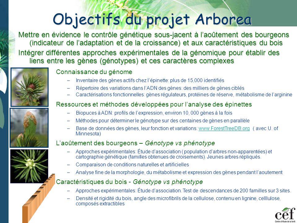 (1) Outdoor Valcartier, Quebec Photopériode naturelle (3) Chambre de croissance U.